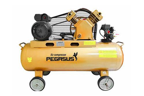 Máy nén khí piston Pegasus TM-V-0.17/8-180L