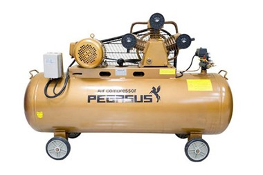 Máy nén khí piston Pegasus TM-W-1.6/8-500L