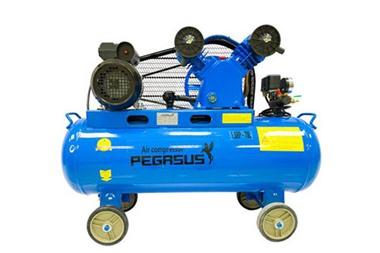 Máy nén khí piston Pegasus TM-V-0.12/8-70L