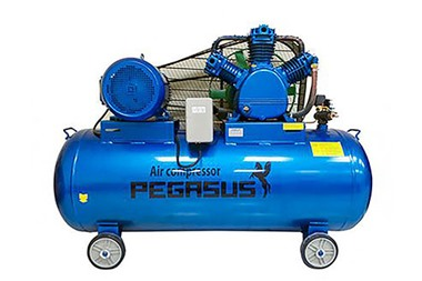 Máy nén khí piston Pegasus TM-W-0.9/8-500L