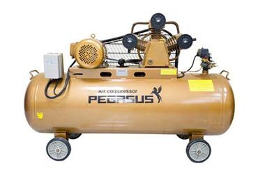 Máy nén khí piston Pegasus TM-W-1.6/12.5-500L
